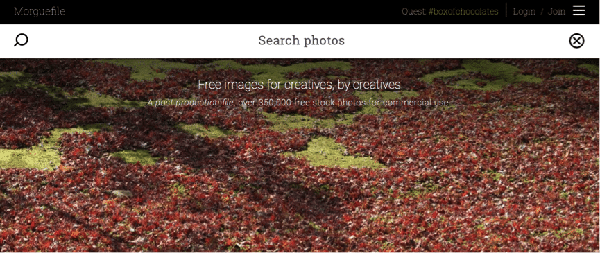 How to Find and Create Great Images for your Blog