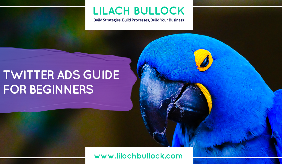 Twitter Ads Guide for Beginners