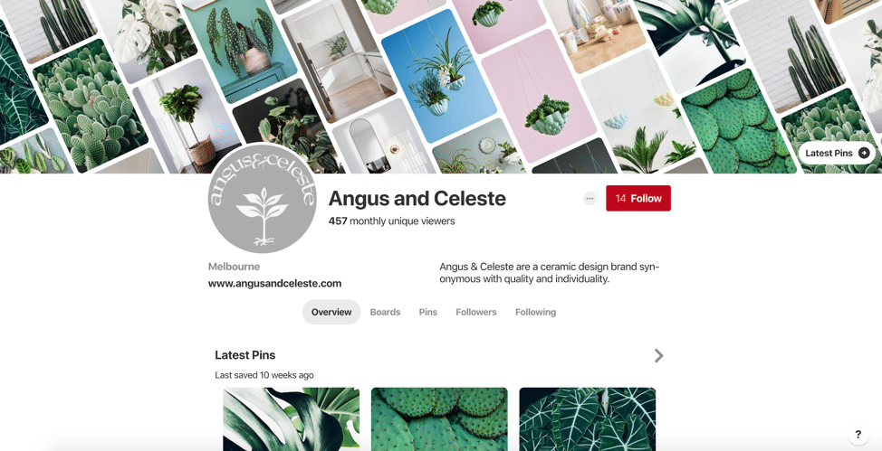 pinterest business account screenshot example