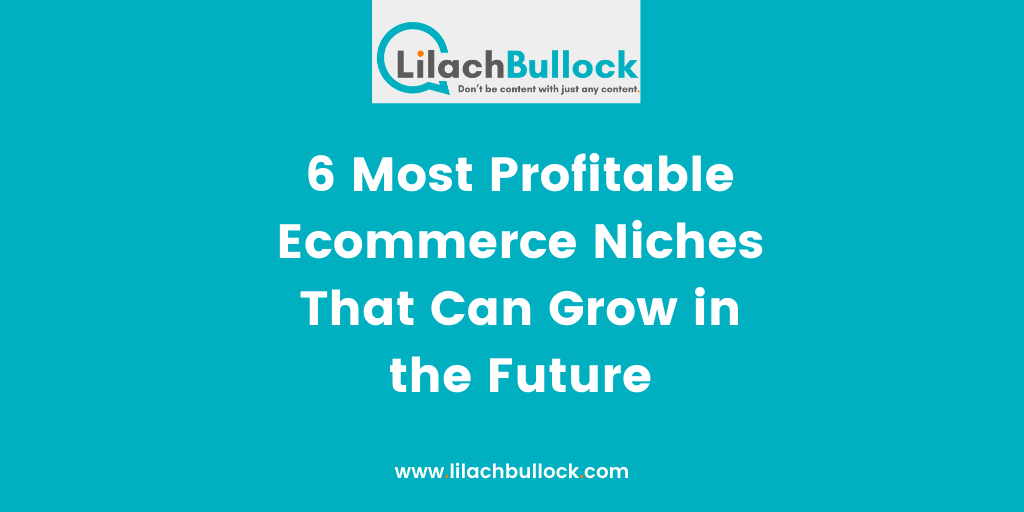 6 Most Profitable Ecommerce Niches That Can Grow in the Future-min