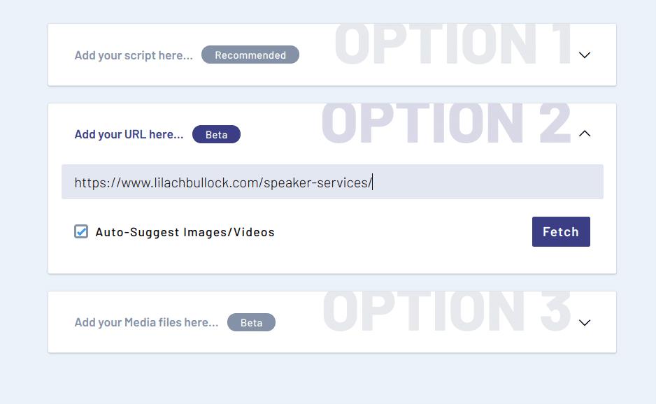 invideo options